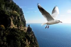 amalfi-costiera Cote Amalfitaine Visites avec Guide