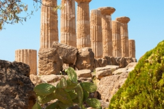 Visites avec guide Sicile