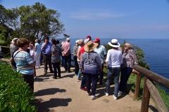 Visites avec Guide Elbe panorama