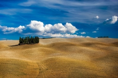 visite avec guide Toscane paesaggio colline