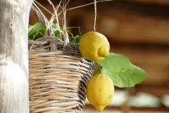 limoni Cote Amalfitaine Visites avec Guide
