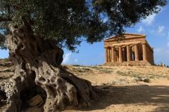 Sicile Temples visites avec guide