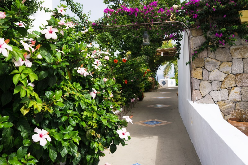 Panarea i Aeolian Islands visites avec guide