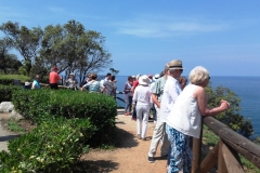 Visites avec Guide Elbe Island panorama